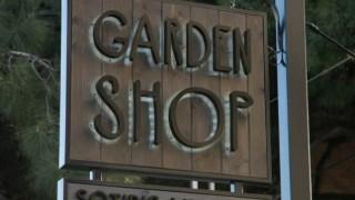 garden-shop-636x884
